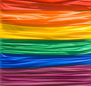 Care Options for LGBTQ Clients